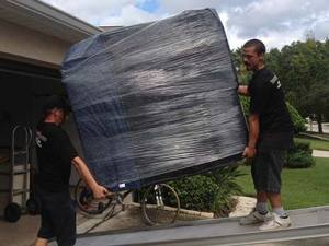 movers in tampa